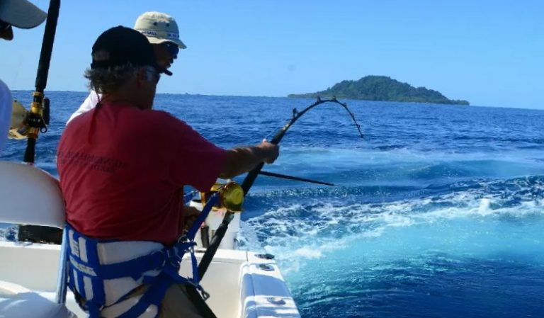 Best Stand up Fishing Harness for Offshore Fishing