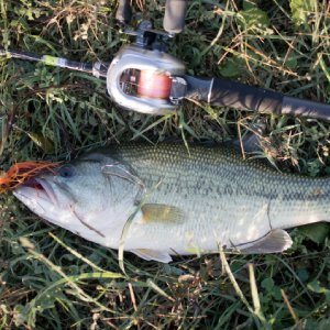 Baitcasting Rod and Reel Combos