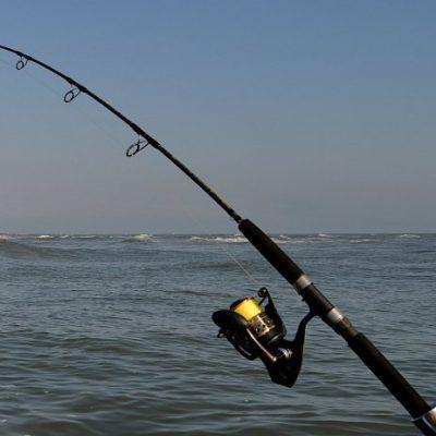 Best saltwater spinning reels - shimano, daiwa, penn, abu